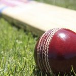 You will be shocked by knowing the Hindi name of cricket
